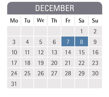 Mannheim business school semester dates
