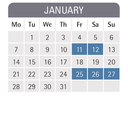 Mannheim business school semester dates